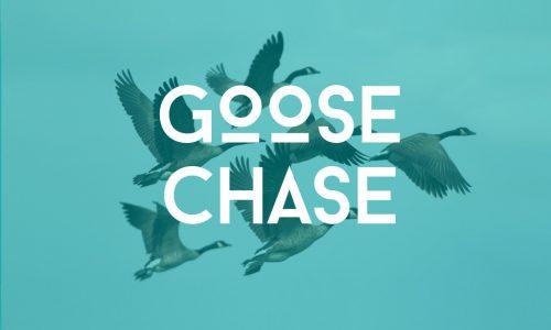 GooseChaseWeb